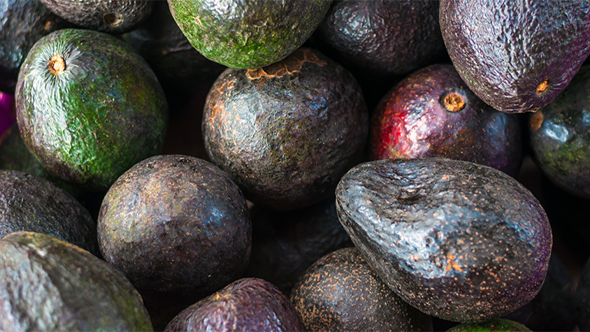 Close up of a box of whole avocados.