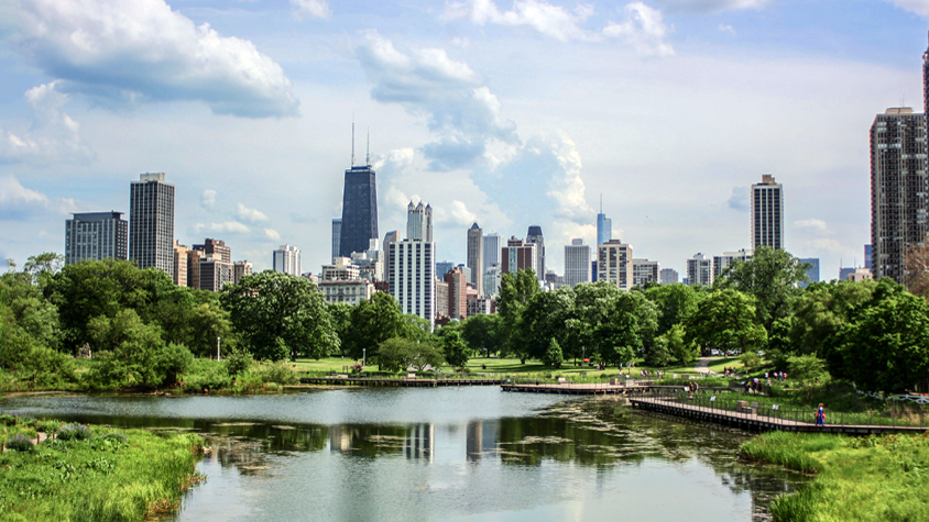 View of Chicago skyline from a park