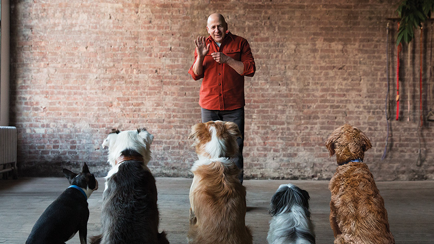 Joel Silverman with dogs