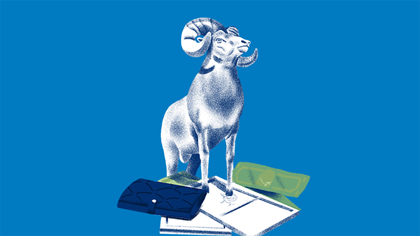 Illustration of a ram standing on a wallet and American money.