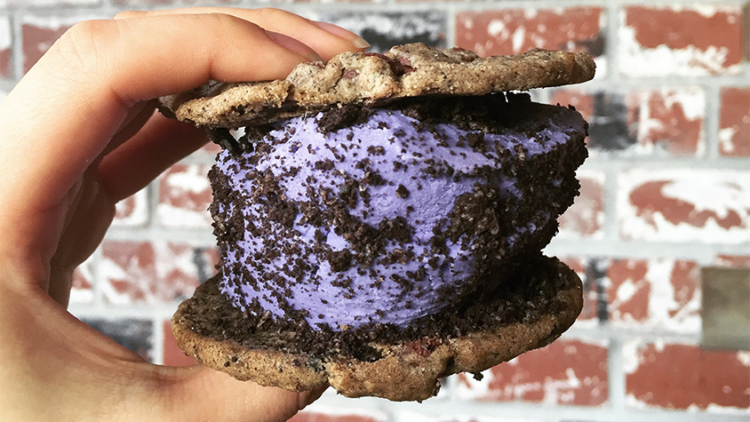 Close up image of a person holding an ice cream sandwich - purple colored ice cream between cookies.